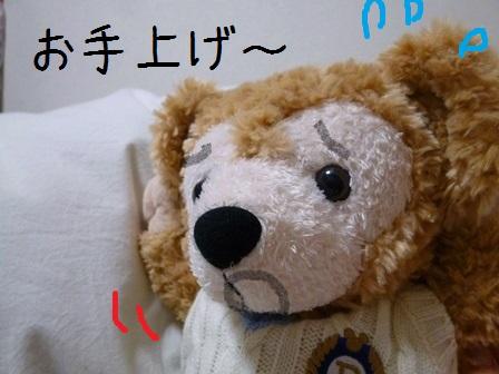 001-0420-1.jpg