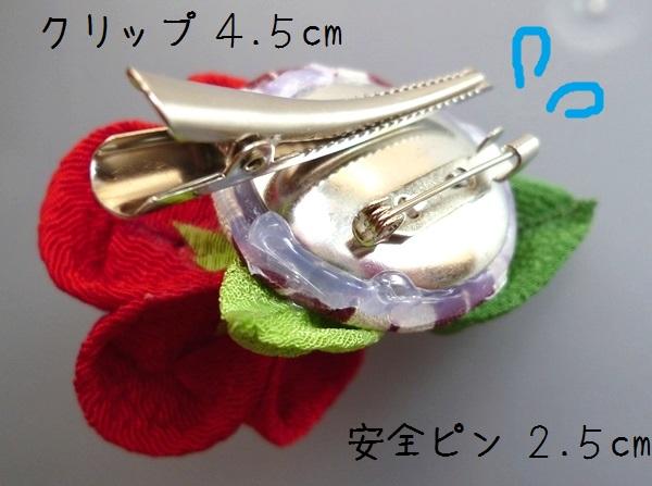 3-4P1160789.jpg