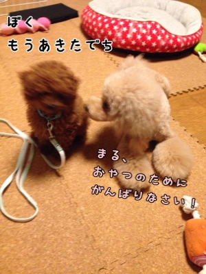 fc2blog_20140717211756e19.jpg