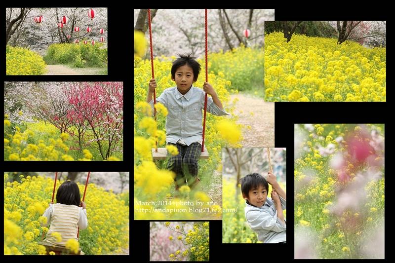 花桃とちゅーりっぷ3・31