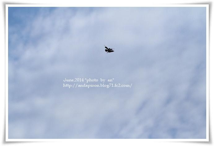20140712 IMG_5023