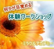 image5_20140812141728378.jpg