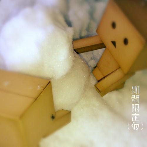 雪だるま作るダンボー