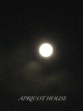 140902中秋の名月