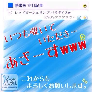 fc2blog_20140513225114879.jpg