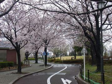 20140330交通園 (1)
