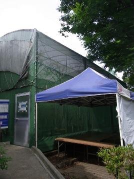 20140610オオムラサキ観察園