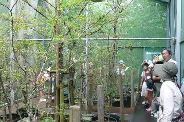 20140725公園案内 (1)