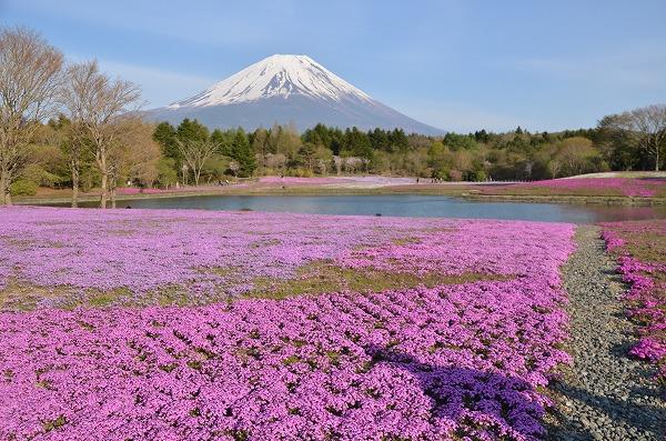 富士山めぐり_140511_5224