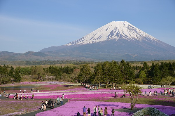 富士山めぐり_140511_5215