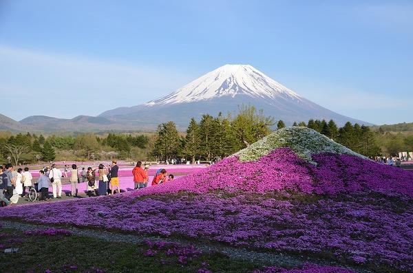 富士山めぐり_140511_5212