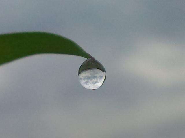 0615梅雨空1