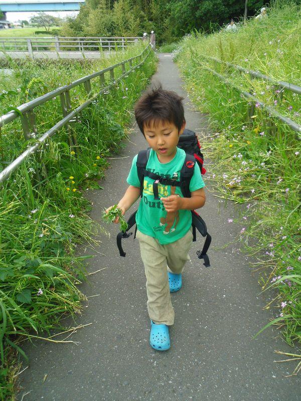 shukaku_201405170135362a2.jpg