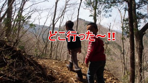 [2014ほうれん坊]p197