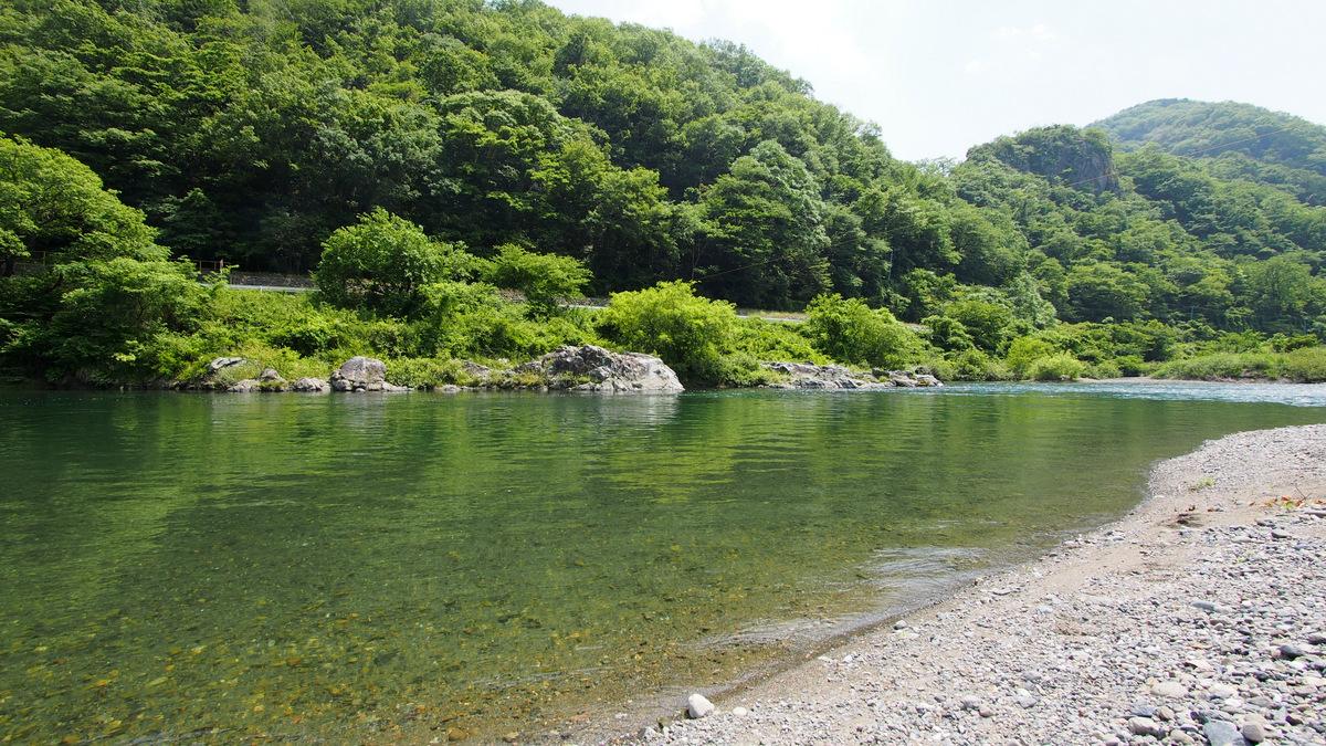 [2014岐阜(初夏)]p040