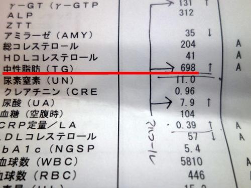 [20140701中性脂肪]p001