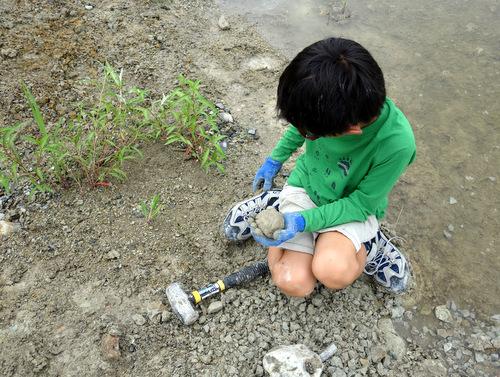 [20140706化石~森林公園]p011