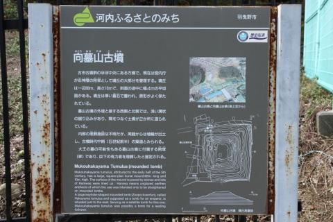 7D2_1387.jpg