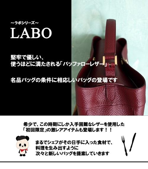 20140903 ラボブログ2-1A