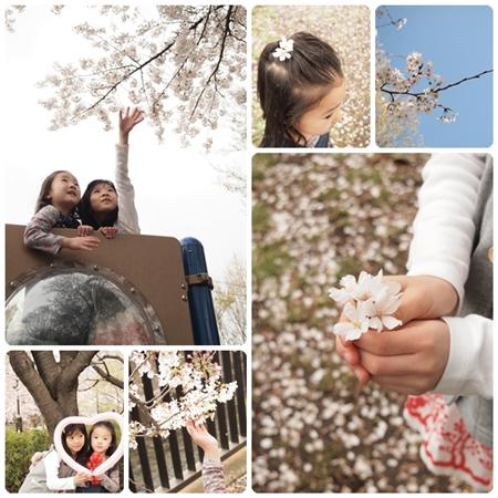 sakura-biyori-e_201404201723227b6.jpg