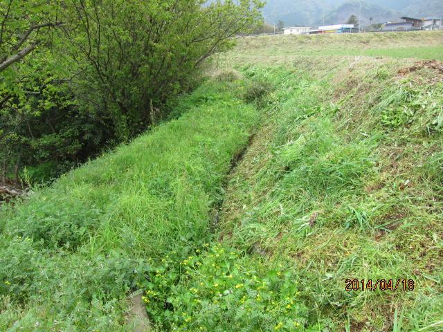 kamijinbata3002水路側後