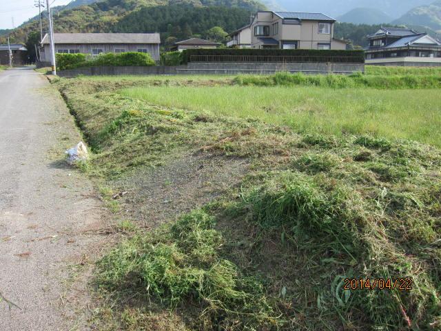 この日に刈った畦2