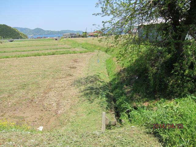 水路際の草刈り終了