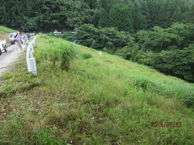 新堤草刈り前2