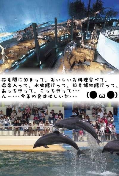 【恐竜博物館&越前松島水族館の入場券】