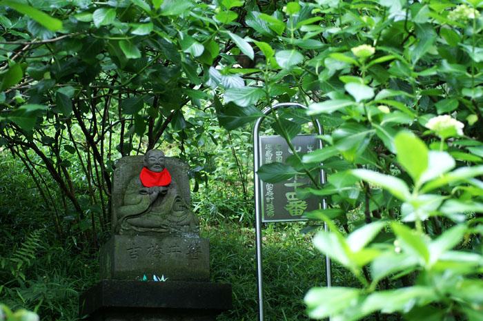 13-6-9-takahata-015.jpg