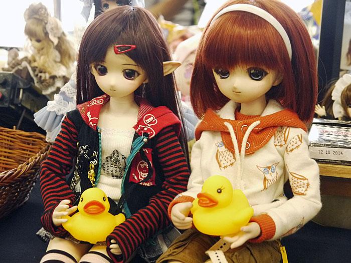 14-7-14-koimari-014.jpg