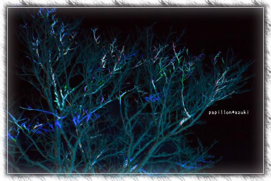 20140209_IMG_34.jpg