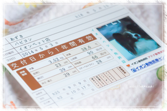 20140503_IMG_31.jpg