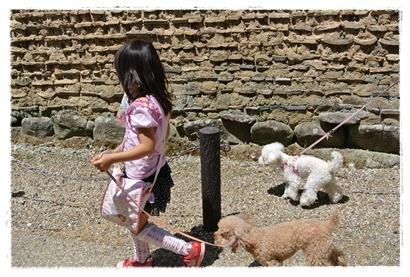 奈良を歩く