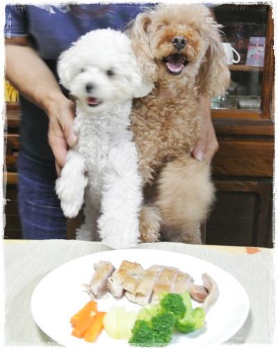 チキンステーキの前の2匹