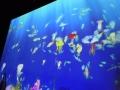 140330海遊館イベントお絵かき水族館2