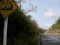 140405伊賀槙山バードウイングCCへの上り