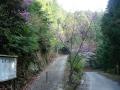 140419鷲峰山林道から金胎寺への激坂