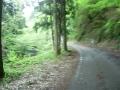 140501大滝山へ上る。勾配は強く、道は荒れてくる