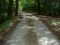 140501阿讃中央広域農道へ、激坂林道を引き返す