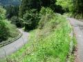 140501川奥から竜王峠へ2
