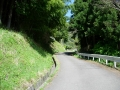 140501川奥から竜王峠へ4