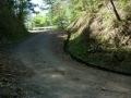 140501川奥から竜王峠へ6、切り通しから再び南斜面へ