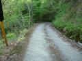 140502大川山から三野へ3、道が荒れてくる