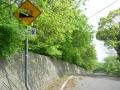 140503城山〜鴨川への下り.2