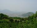 140503五色台への上り.5、みかん畑と眺望