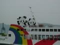 140503高松港玉藻防波堤.5、第一こくさい丸のパンダ