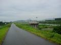 140802久御山、西一口から宇治川堤防へ戻る