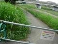 140813京川橋アンダーパスの通行止.1