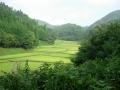 140906二料〜田能の谷あいの田